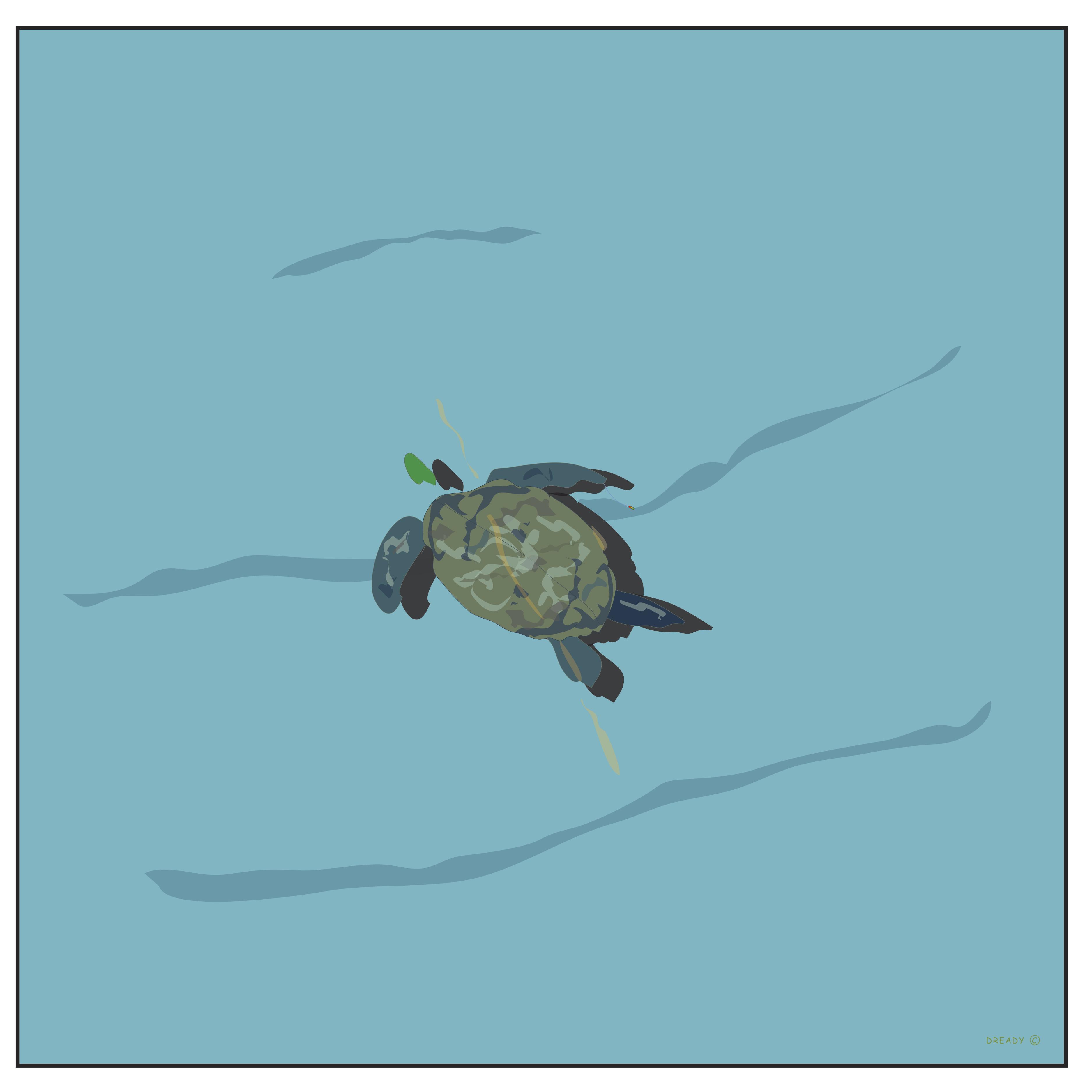 Turtle 2018